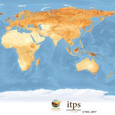 Global Soil Organic Carbon Map