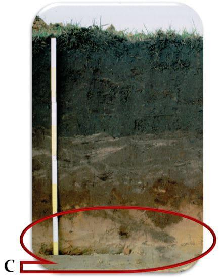 Рис. 11  С-материнская горная порода