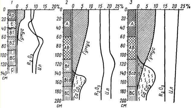 Рис. 15 Распределение веществ в профиле