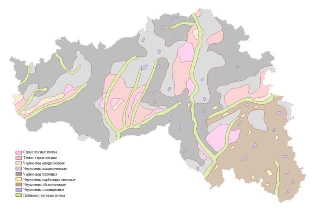 Среднемасштабная почвенная карта Белгородской области